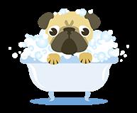 home__0001_bathing-pug-1